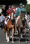 April 05, 2014: Testa Rossi (FR) and jockey Jose Lezcano before the Keeneland Ashland Stakes.  Candice Chavez/ESW/CSM
