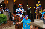 """DEL MAR, CA  AUGUST 21: #3 Red King, ridden by Joel Rosario, in the post parade of the Del Mar Handicap (Grade ll) Breeders Cup """"Win and You're In"""" Turf Division on August 21, 2021 at Del Mar Thoroughbred Club in Del Mar, CA  (Photo by Casey Phillips/Eclipse Sportswire/CSM)"""