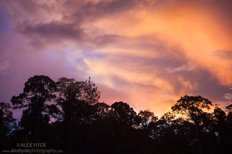 Dramatic sunset over lowland dipterocarp rainforest, Danum Valley, Sabah, Borneo.