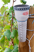 Domaine Haut-Lirou in St Jean de Cuculles. Pic St Loup. Languedoc. Du Pont Rain gauge in the vineyard. France. Europe.