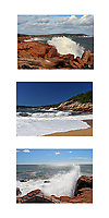 Acadia Waves Collage