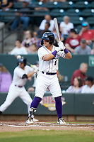 Steele Walker (6) of the Winston-Salem Dash at bat against the Carolina Mudcats at BB&T Ballpark on June 1, 2019 in Winston-Salem, North Carolina. The Dash defeated the Mudcats 5-4 in game two of a double header. (Brian Westerholt/Four Seam Images)