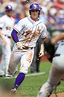 LSU Tigers second baseman Jared Foster (17) sprints towards home against the TCU Horned Frogs in the NCAA College World Series on June 14, 2015 at TD Ameritrade Park in Omaha, Nebraska. TCU defeated LSU 10-3. (Andrew Woolley/Four Seam Images)