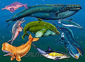 Alfredo, CUTE ANIMALS, puzzle, paintings(BRTO50977,#AC#) illustrations, pinturas, rompe cabeza