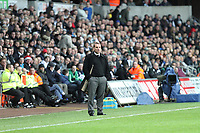 Swansea City V Fulham, 10/12/11<br /> <br /> Picture by: Ben Wyeth<br /> Athena Picutre Agency