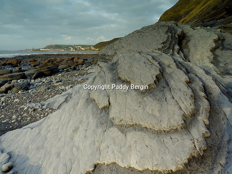 The rocks in Ceredigion, West Wales, were laid down on the floor of a deep-sea basin during the Silurian and Ordovician period some 505 to 406 million years ago. These sedimentary rocks – mudstones, siltstones and sandstones – were uplifted and emerged above the sea during a later mountain building period. This caused them to be folded and faulted. The eroded coastline provides a unique opportunity to see these rocks and their structures. I went back to photograph this rock structure again and it had been buried under a rock the size of a house which had come out of the cliffs in a storm.<br /> <br /> Stock Photo by Paddy Bergin