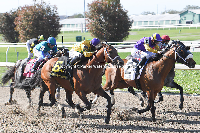 March 20, 2021: Chess Chief wins the New Orleans Classic during Louisiana Derby Day at Fair Grounds Race Course in New Orleans, Louisiana. Parker Waters/Eclipse Sportswire/CSM