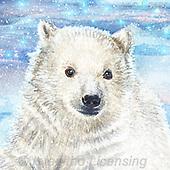 Sinead, CHRISTMAS ANIMALS, WEIHNACHTEN TIERE, NAVIDAD ANIMALES, paintings+++++,LLSJ2151,#xa# ,icebear,icebears ,polarbear