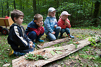 Kinder im Wald, Kinder erleben die Natur im Wald, Walderlebnistag, Schulkinder bei einer Waldexkursion, Exkursion, Kinder sammeln im Wald Blätter, Äste, Zapfen, Früchte, Grundschulklasse, Schulklasse und lerne, welches Blatt und welche Frucht zu welchem Baum gehört, Waldtag, Waldpädagogik, Naturpädagogik