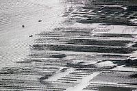 France, Gironde (33),Bassin d'Arcachon, Le banc d'Arguin ,  réseve naturelle - vue aérienne //  France, Gironde, Bassin d'Arcachon, The Banc d'Arguin, Arguin bank,an immense sandbank between Cap Ferret and the Great Dune of Pilat, aerial view