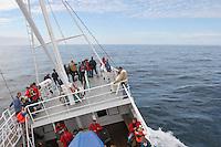 Walsafari, Wal-Safari, Ausfahrt mit einem Kutter, Boot, Schiff auf den Atlantik um Wale zu beobachten, whale watching, Wal, Andenes, Nord - Norwegen, starker Seegang, Schiff schaukelt