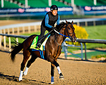 LOUISVILLE, KY - APRIL 29: Combatant, trained by Steve Asmussen, exercises in preparation for the Kentucky Derby at Churchill Downs on April 29, 2018 in Louisville, Kentucky. (Photo by John Voorhees/Eclipse Sportswire/Getty Images)