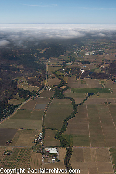 aerial photograph of northern Napa Valley and the Napa River toward Calistoga, Napa County, California, Frank Family Vineyards and Larkmead Vineyards in the foreground