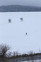 Europe/France/Franche-Comté/25/Doubs/Sarrageois: randonnée en raquette le long du Doubs //  //  France, Doubs, Sarrageois: snowshoeing along the Doubs