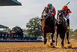 September 28, 2019 : Imperial Hint #4, ridden by Javier Castellano, outduels Firenze Fire #6, ridden by Irad Ortiz, to nip him at the wire by a nose and with the Vosburgh Stakes during Jockey Club Gold Cup Day at Belmont Park Race Track in Elmont, New York. Scott Serio/Eclipse Sportswire/CSM