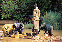 Tortiya, Ivory Coast (Cote d'Ivoire).  Sifting for Diamonds in a Small Streambed.