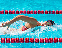 Stanford, California - October 12, 2019:Stanford Women's Swimming defeats Arkansas 186-105 at Avery Aquatic Center in Stanford, California.