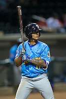 Gleyber Torres (11) of the Myrtle Beach Pelicans at bat against the Winston-Salem Dash at BB&T Ballpark on April 18, 2016 in Winston-Salem, North Carolina.  The Pelicans defeated the Dash 6-4.  (Brian Westerholt/Four Seam Images)