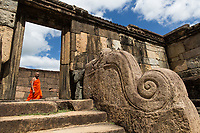In the ruins of the ancient city of Polonnawura, built in the 12th Century as Sri Lanka's second official capital, a nearly 1000 year old sculpture of an elephant serves as part of an elaborate staircase. The Sri Lankan elephant has been an important part of the island's culture and religions for thousands of years and continues to be so in modern times.