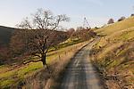 Road toward the historic iron headframe of the Fremont mine, Amador County, Calif.