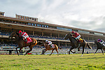 DEL MAR, CA  AUGUST 17: #1 Cambier Parc, ridden by John Velazquez, wins the Del Mar Oaks (Grade 1) on August 17, 2019 at Del Mar Thoroughbred Club in Del Mar, CA.  . (Photo by Casey Phillips/Eclipse Sportswire/CS\PDO1M)\PDO1