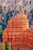 hoodoos, at sunset, Fairyland Canyon, Bryce Canyon National Park, Utah, USA