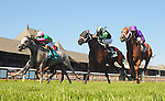 Disco Partner (no. 9), ridden by Jose Ortiz and trained by J.T. Ryerson, wins the 13th running of the Troy Stakes for three year olds on August 20, 2015 at Saratoga Race Course in Saratoga Springs, New York. (Bob Mayberger/Eclipse Sportswire)