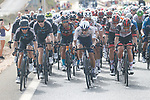 The peloton during Stage 8 of La Vuelta d'Espana 2021, running 173.7km from Santa Pola to La Manga del Mar Menor, Spain. 21st August 2021.     <br /> Picture: Luis Angel Gomez/Photogomezsport | Cyclefile<br /> <br /> All photos usage must carry mandatory copyright credit (© Cyclefile | Luis Angel Gomez/Photogomezsport)