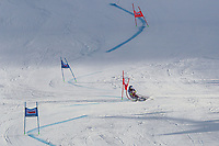 20th December 2020; Alta Badia, South-Tyrol, Italy; International Ski Federation World Cup Alpine Skiing, Giant Slalom;  Alexis Pinturault (FRA) on the course
