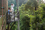 Tourists bird and wildlife watching from canopy walkway. Danum Valley, Sabah, Borneo.