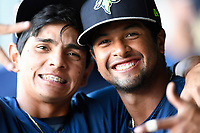Andres Gimenez (13) and and Luis Carpio (18) of the Columbia Fireflies pose for a photo in a game against the Greenville Drive on Thursday, June 15, 2017, at Fluor Field at the West End in Greenville, South Carolina. Columbia won, 7-2. (Tom Priddy/Four Seam Images)