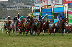 DEL MAR, CA  AUGUST 21: The start of the Del Mar Oaks (Grade 1) on August 21, 2021 at Del Mar Thoroughbred Club in Del Mar, CA.  (Photo by Casey Phillips/Eclipse Sportswire/CSM)