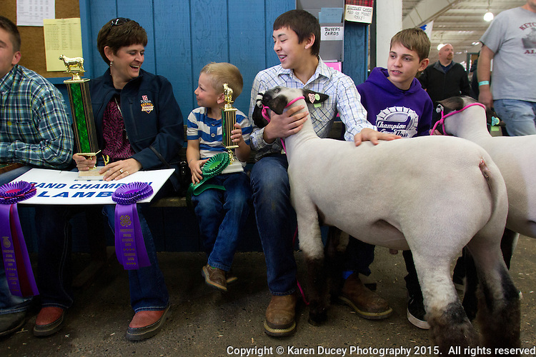 From left to right: Diane Stratton,Champion Drive 4H Leader; Chance Lee, 5 from Quincy, Wash.; Alex McGee, 14, from Lakeridge Middle School with his lamb named after his friend sitting next to him, John; John Wiles, 14, also from Lakeridge Middle School, with his lamb named after his friend, Alex; wait to show their lams in the auction ring at the Junior Livestock Show at the Washington State Spring Fair on April 19, 2015. <br /> <br /> Students in the FFA and 4H programs participate in the auction of livestock including steers, lambs and hogs in the Northwest Junior Livestock Show at the Washington State Spring Fair in Puyallup, Wash. on April 19, 2015.  (photo © Karen Ducey Photography)
