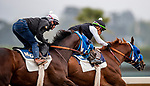 October 22, 2021: Dr. Schivel with Flavien Prat (outside) works in preparation for the Breeders Cup Sprint at Santa Anita Park in Arcadia, California on October 23, 2021. Evers/Eclipse Sportswire/CSM