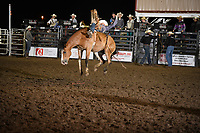Yuma Co Rodeo