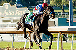 """ARCADIA, CA  OCTOBER 2: #5 Medina Spirit, ridden by John Velazquez, is all alone in the stretch of the Awesome Again (Grade 1) Breeders Cup """"Win and You're In Classic Division"""" on October 2, 2021 at Santa Anita Park in Arcadia, CA.(Photo by Casey Phillips/Eclipse Sportswire/CSM)"""