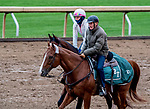 October 30, 2020: Trainer Barclay Tagg with Tiz the Law at Keeneland Racetrack in Lexington, Kentucky on October 30, 2020.Scott Serio/Eclipse Sportswire/Breeders Cup/CSM