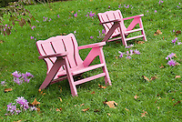 Two chairs garden furniture - Chanticleer + Colchicum in autumn