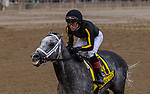 August 07, 2021: Knicks Go #4, ridden by jockey Joel Rosario win the Grade 1 Whitney Stakes at Saratoga Race Course in Saratoga Springs, N.Y. on August 7, 2021. Robert Simmons/Eclipse Sportswire/CSM