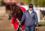 OCT 27: Breeders' Juvenile Fillies entrant Two Sixty, trained by Mark E. Casse, at Santa Anita Park in Arcadia, California on Oct 27, 2019. Evers/Eclipse Sportswire/Breeders' Cup