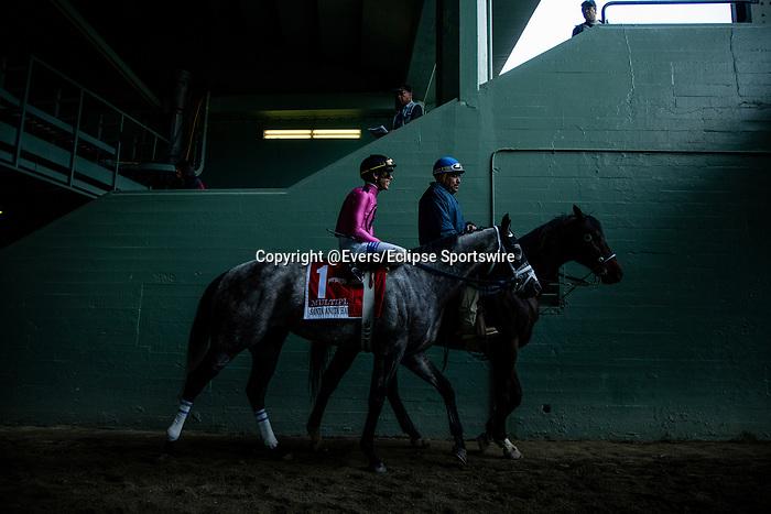 MAR 07:Mltipplier and Tyler Gaffalione before the Santa Anita Handicap at Santa Anita Park in Arcadia, California on March 7, 2020. Evers/Eclipse Sportswire/CSM