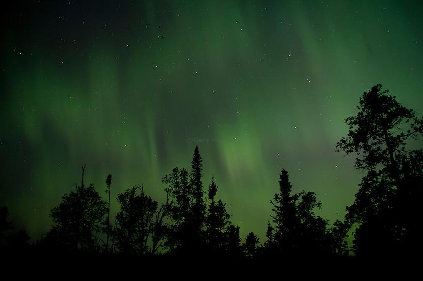 The Big Dipper, Ursa Major, seen through the Aurora Borealis or Northern Lights