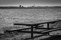 A picnic table on the bay shore with the San Francisco skyline on the horizion in black and white.