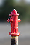 Red fire hydrant raised on pipe with blurred background.  Multiple paint layers and detail.