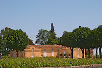 Chateau Trottevieille (Trotte Vieille), premier grand cru classe Saint Emilion Bordeaux Gironde Aquitaine France