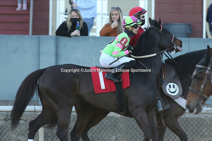 March 6, 2021: Bruder Bob (1) with jockey Alex Canchari aboard before the eighth race at Oaklawn Racing Casino Resort in Hot Springs, Arkansas. ©Justin Manning/Eclipse Sportswire/CSM