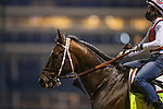 April 27, 2021: Keepmeinmind gallops in preparation for the Kentucky Derby at Churchill Downs in Louisville, Kentucky on April 27, 2021. EversEclipse Sportswire/CSM