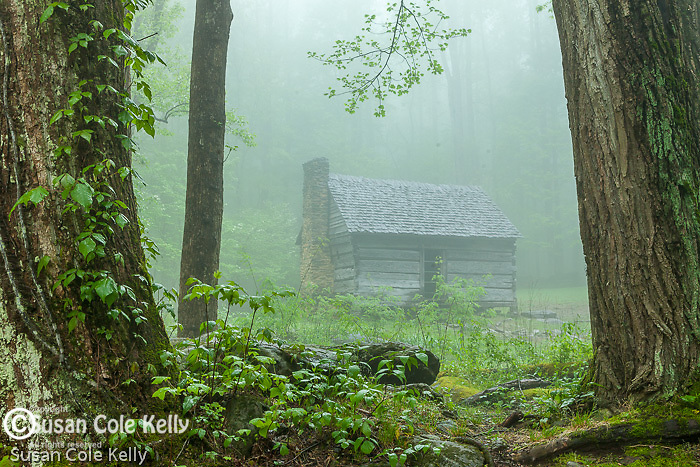 Historical cabin, Roaring Fork Nature Trail, Great Smoky Mountains National Park, Tennesee, USA