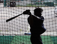 Infielder Francisco Soriano (5) of the Potomac Nationals hits balls in the batting cage before a game against the Myrtle Beach Pelicans on Aug. 7, 2010, at BB&T Coastal Field in Myrtle Beach, S.C. Photo by: Tom Priddy/Four Seam Images