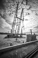 Savannah Giant - Monochrome, 04-19-2021